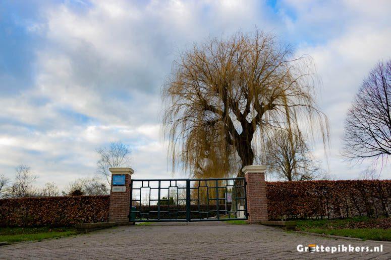 Begraafplaats Burg. van Veenstraat